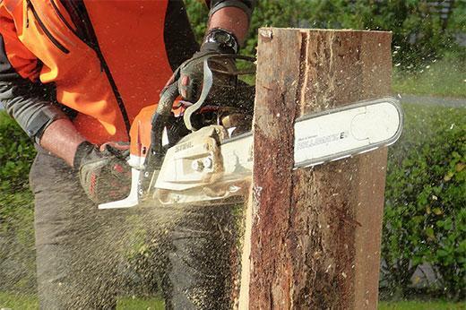 Chainsaw Safety