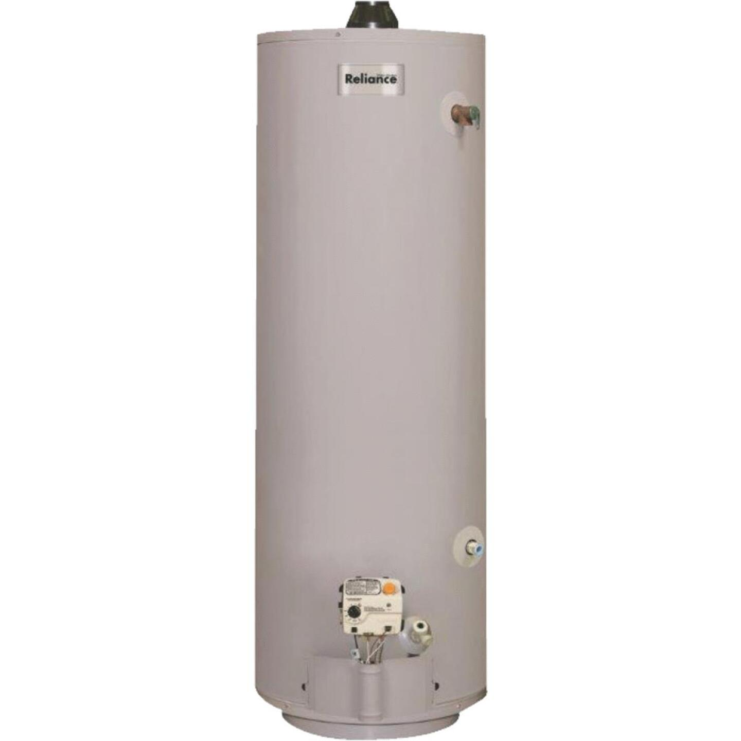 Reliance 40 Gal. 6yr Natural Gas/Liquid Propane Direct Vent Water Heater for Mobile Home Image 1
